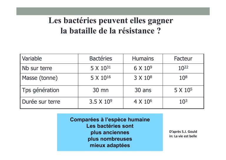 Pulcini bact versus humains